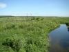 Wet valley of the Revna River