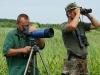 Bird observations