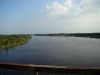 The Pripyat river – photo from the bridge where a pair of Kestels is breeding