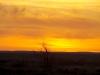 A marvellous sunrise