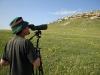 Observing nesting territory of the Saker