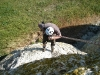 Climbdown to the nest