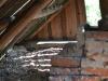 The bathhouse attic where the Eagle Owl nests