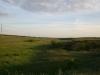 Степова балка біля гнізда балабана в Миколаївській області