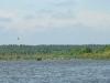 Торфяные карьеры на болоте Замглай
