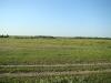 Охотничьи биотопы полевого луня
