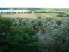 Мезинский национальный парк