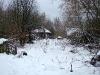 Так выглядят заросшие дворы в нежилых селах (с. Ямполь)