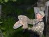 Сергей Гащак с птенцом филина
