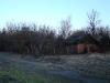Дома в с. Новоселки скрывают деревья