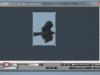 Таким чином, довжина в пікселях дорівнює 205, коефіцієнт перерахунку для даної камери і фокусної відстані - 1.63 px/cm/km, реальна довжина тіла змієїда в такому положенні ≈ 65 cm; відповідно відстань до птаха складає 65 / 205 × 1.63 = 0.517 ≈ 0.5 km