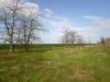 Лесополоса и окружающий ландшафт
