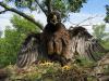 Пташеня у захисній позі