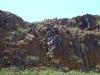Гнездо курганника, занятое балобаном