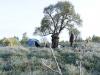 Утренний лагерь в Курляндии. Приморозило