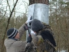 Установка защиты от куниц на второе дерево - гвоздями к стволу
