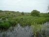 Весенний паводок на болоте Широкое