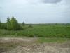 На болоте Широкое в гнездовой период отмечено 10 видов хищных птиц