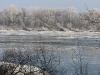 Кряквы на полынье (Каневский заповедник). Фото М. Гаврилюк