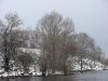 Орланы около Кременчугской ГЭС. Фото М. Гаврилюк