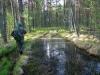 Комары вынуждают в мае использовать капюшон (на фото Ю. В. Кузьменко)