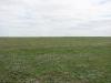 Степи в Волгоградской области