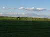 Красивые пейзажи без сусликов для орлов не привлекательны