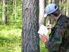 І. Комарницький проводить опис гніздової ділянки канюка
