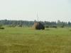 Сенокосы на лугах в северном отделении РПЗ