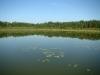 Полесское озеро