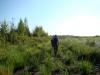 Уходим в болото