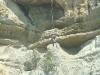 После осмотра гнезда балобана