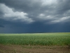 Надвигающаяся непогода