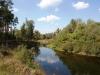 Река Ворскла в районе Новых Санжар (фото: wikimedia.org)