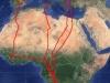 Мапа переміщень самки кібчика Ringlo. Джерело - сайт satellitetracking.eu