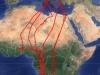 Мапа переміщень самки кібчика Marina. Джерело - сайт satellitetracking.eu